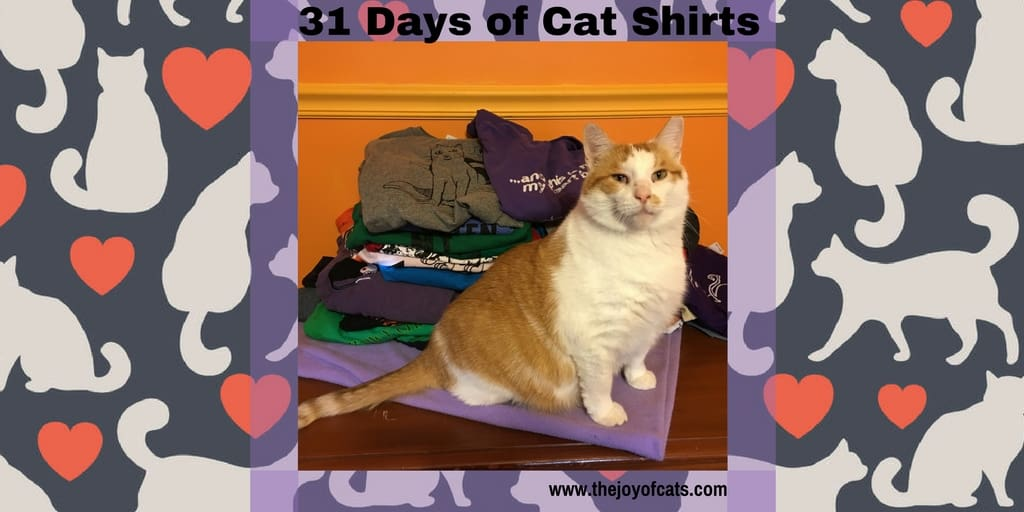 31 Days of Cat Shirts blog series. Heidi will be wearing a different cat shirt every day in October 2016.