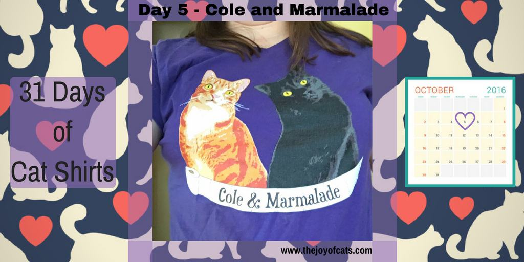31 Days of Cat Shirts - Day 5 - Cole and Marmalade