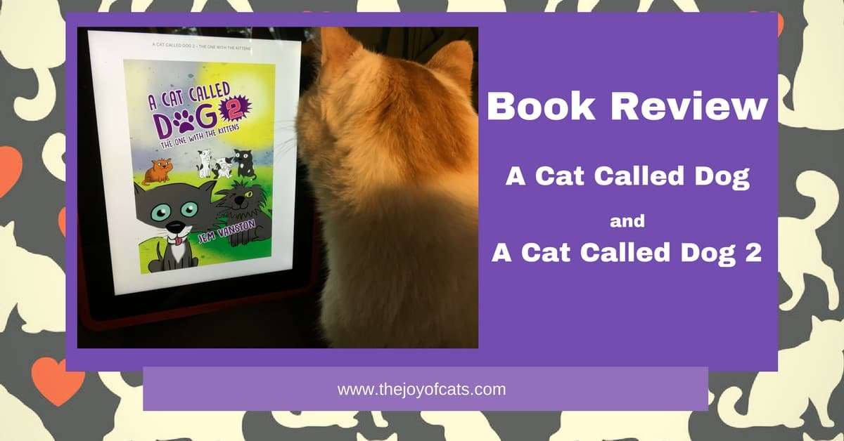 A Cat Called Dog - Book Review
