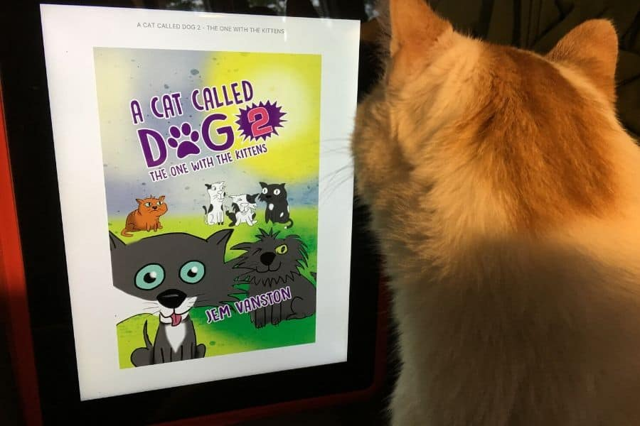 Cat looking at the title page of A Cat Called Dog ebook