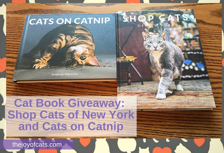 Cat Book Giveaway Shop Cats of New York and Cats on Catnip