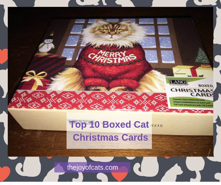 Top 10 Boxed Cat Christmas Cards