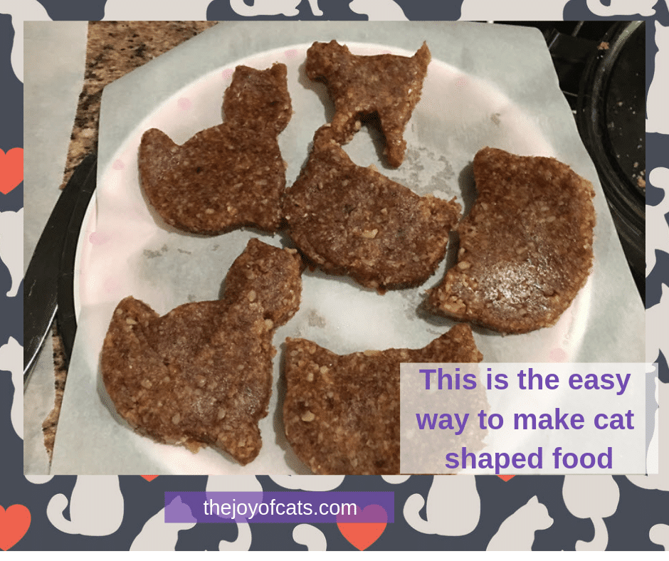 This is the easy way to make cat shaped food