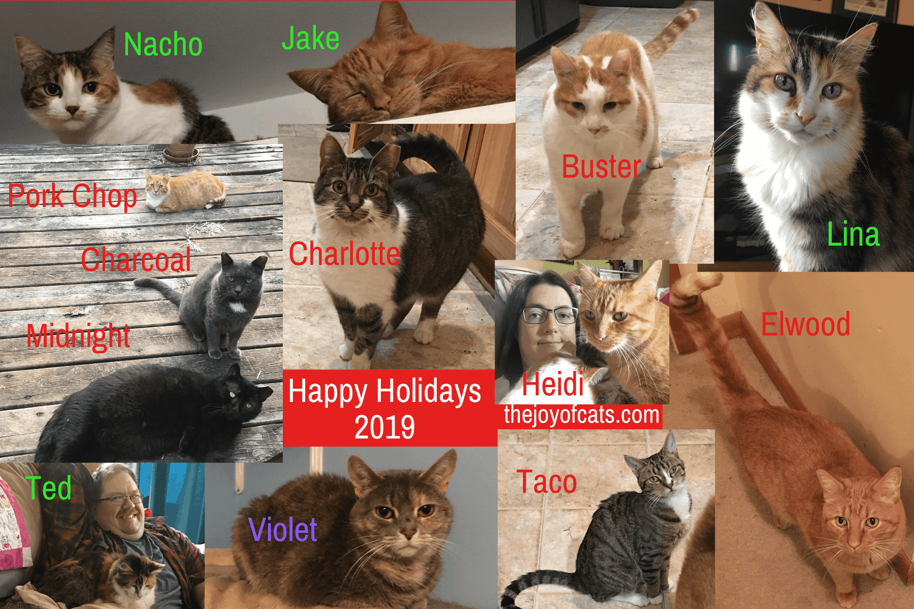 Happy Holidays 2019 from the cats