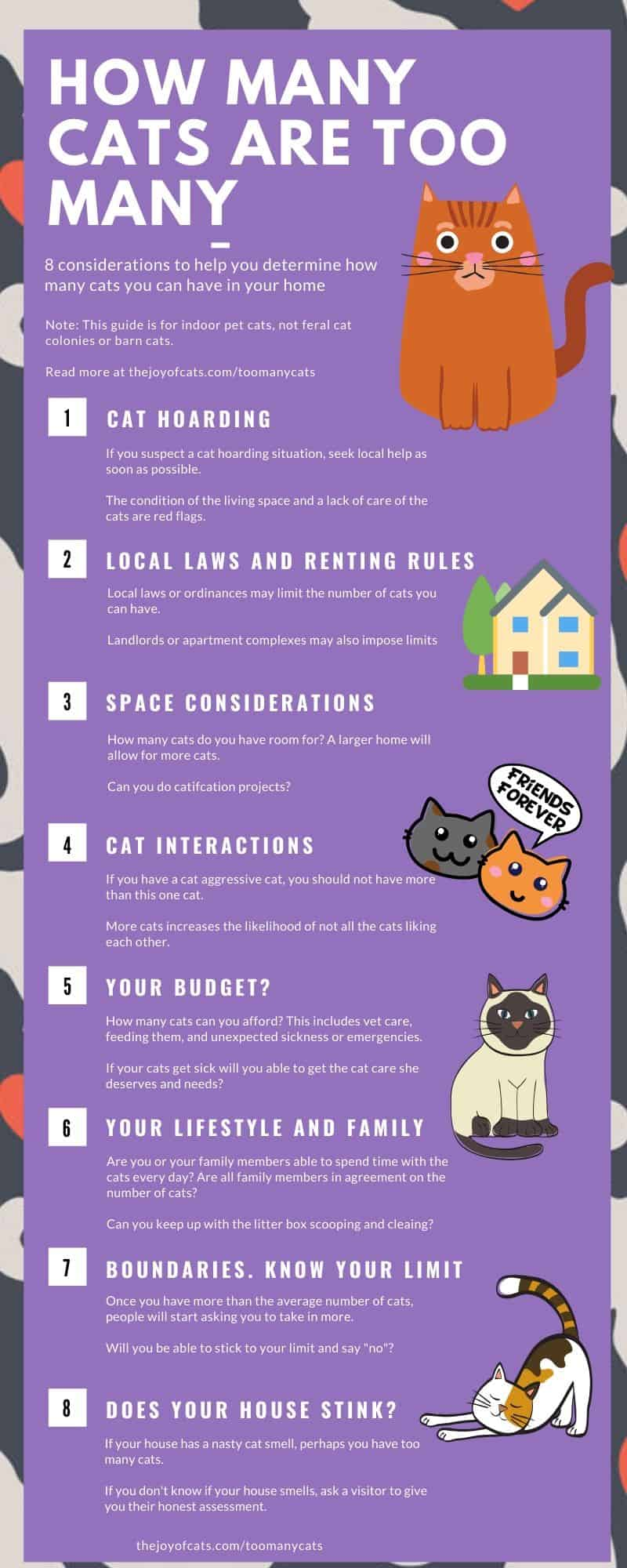 infographic listing the 8 considerations for how many cats are too many