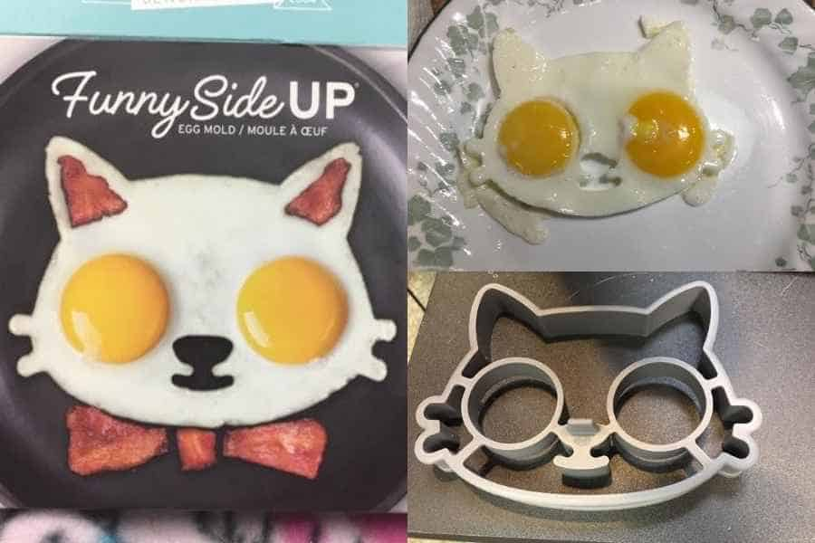 Cat egg mold box, cooked eggs, and the mold