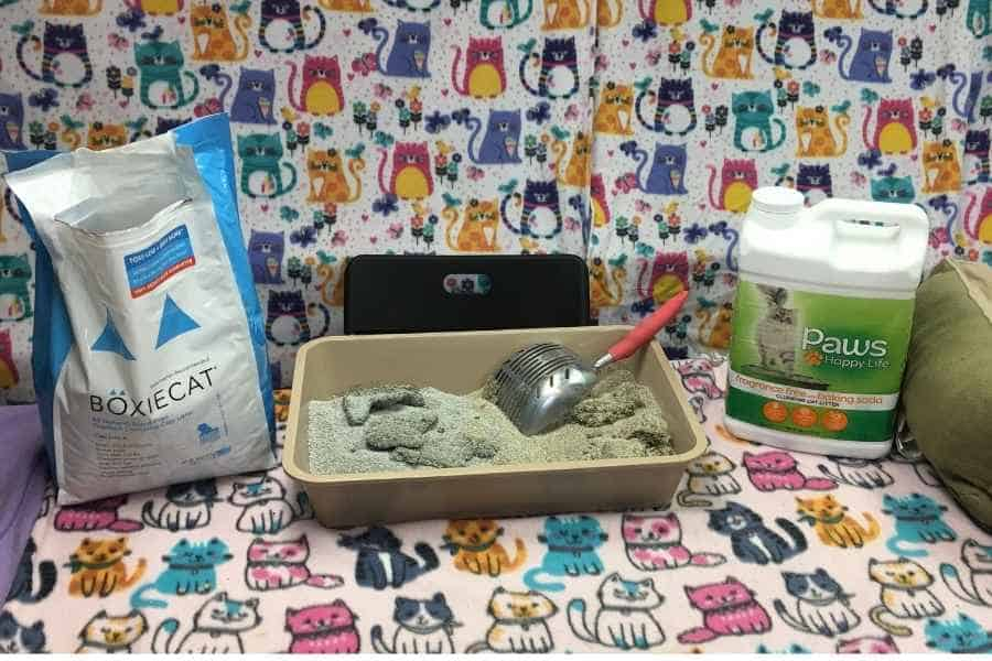 Boxiecat litter and Paws Happy Life cat litter with a littler box in between them