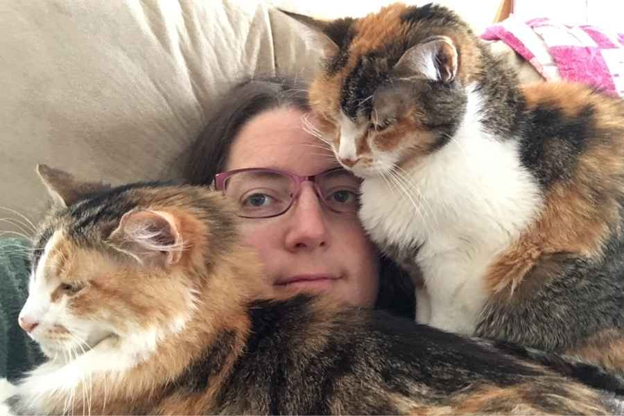 two cats sit on a lady