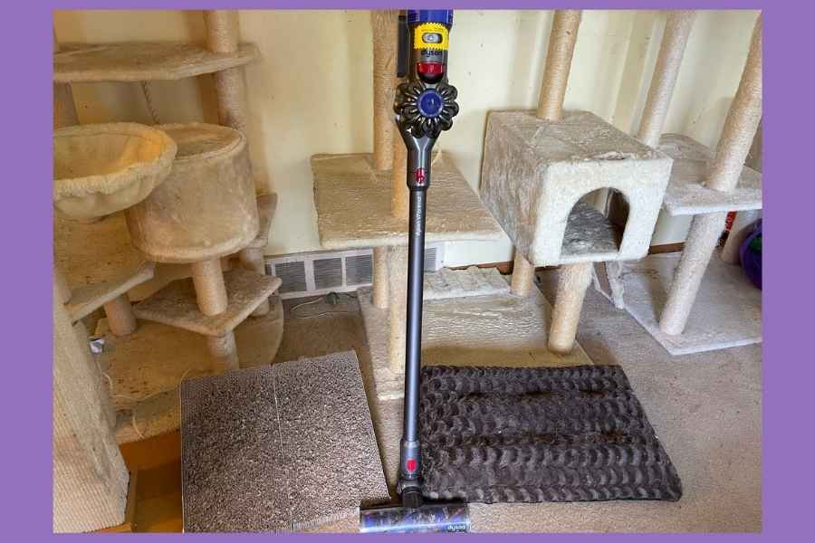 Dyson V7 Animal Vacuum in front of cat towers