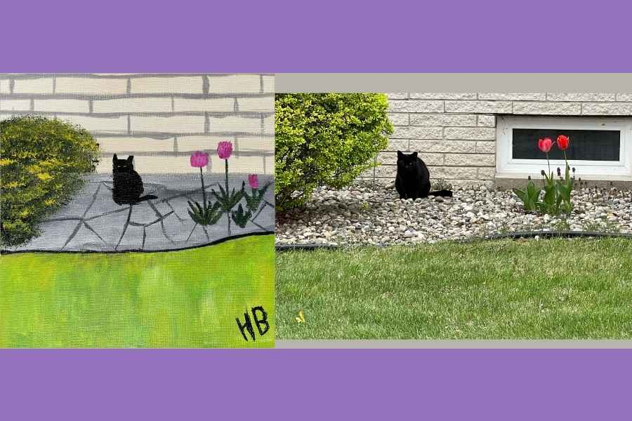 On the left is painting of a black cat with a bush on the left and pink flowers on the right. Then on right side is the reference photo.